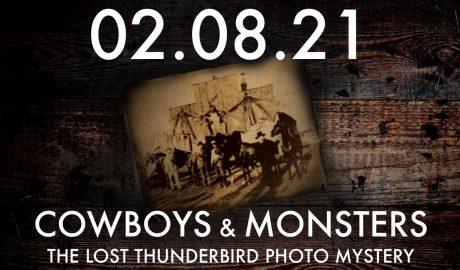 Thunderbird photo
